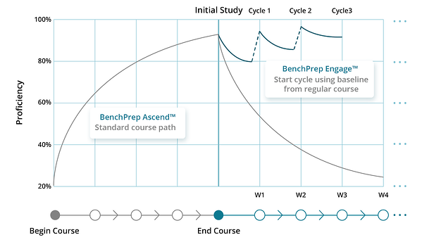 forgetting-curve-continuous-learning