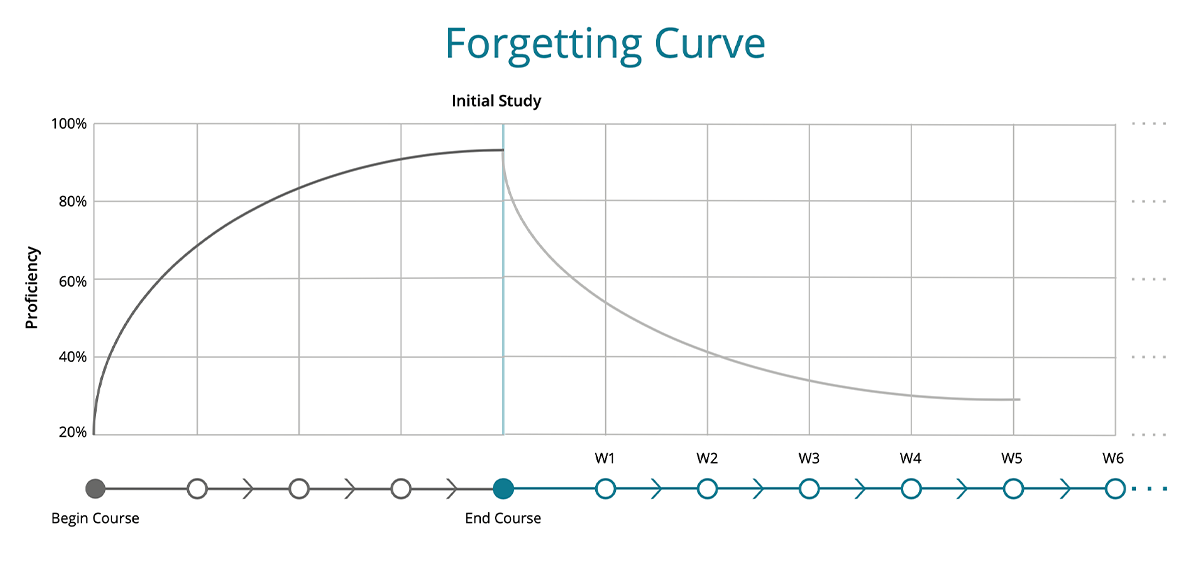 inline - forgetting curve